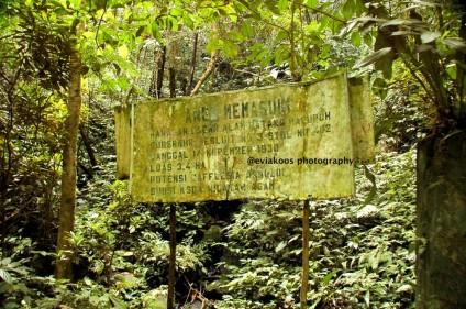 Papan nama hutan lindung, sudah gak keliatan lagi.