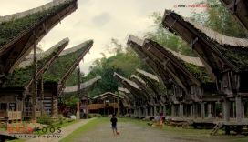 Traditional house namely Tongkonan of Toraja ethnic in Sout Sulawesi, Indonesia